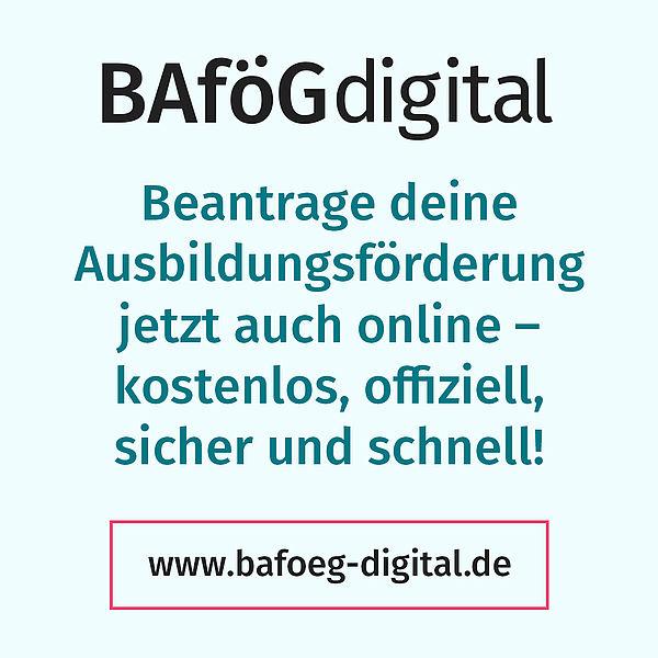 www.bafoeg-digital.de